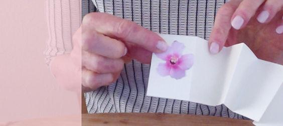 2020_HDonline_Horz_Minibook_pink.jpg