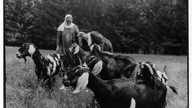 The Sisters of St. Mary's Convent, Northern Spy Farm, Vermont