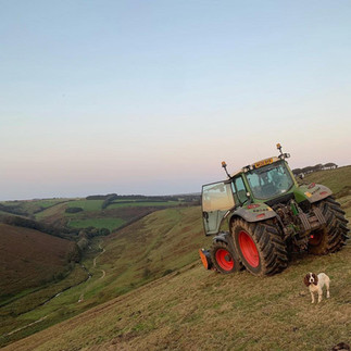 Groundclearance_Exmoor_JCroftContracting