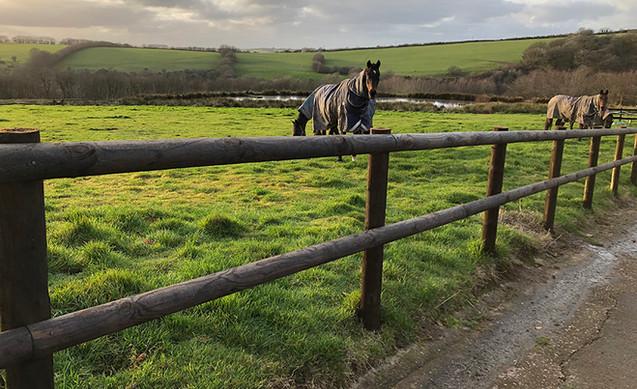 Equestrian_fencing_Devon_JCroftContracti