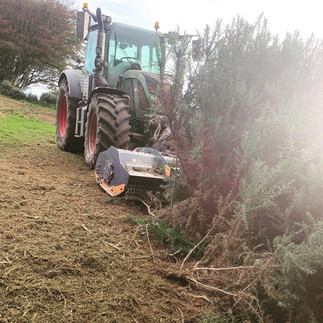 Gorse_clearance_JCroftContracting.jpg