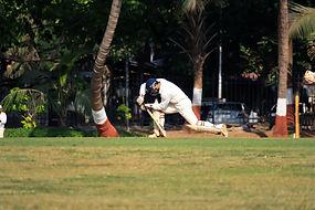 Cricket Player