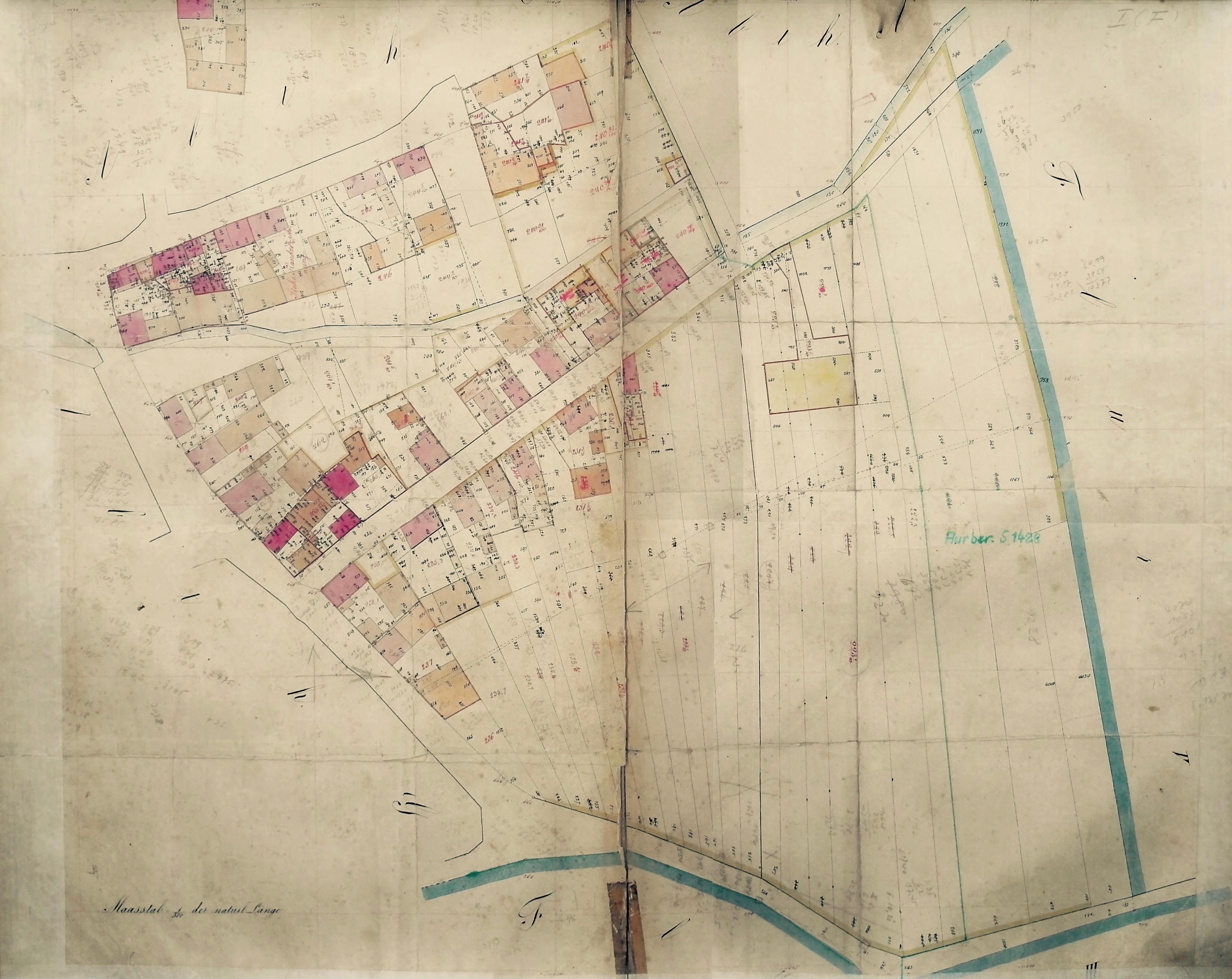 1859: Selzen (5)