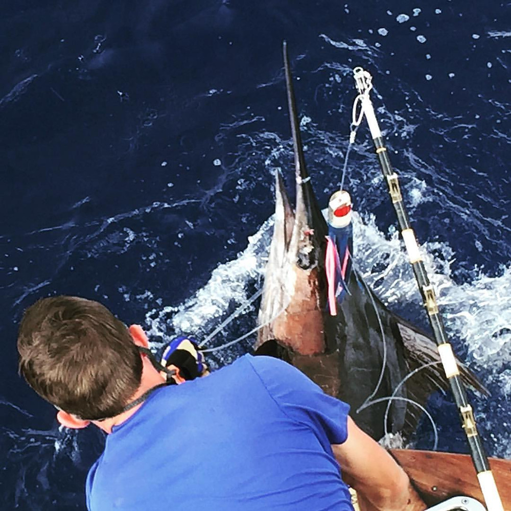 Kona Fishing Marlin Tag