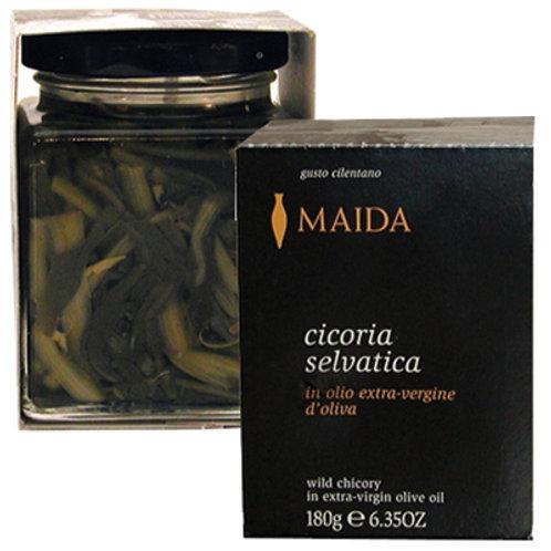 Maida - Wild Chicory