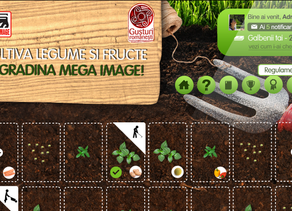 Mega Chich Campaign by Mega Image awarded at Internetics 2015 in Full Digital Campaign category