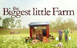 BiggestLittleFarm3.jpg