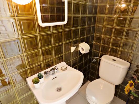 bv10-bathroom-2.jpg
