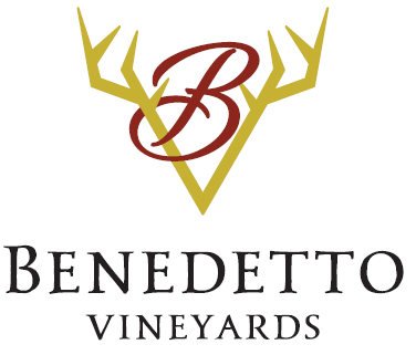 Benedetto Vineyards