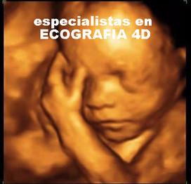 eco-3d web_edited.jpg