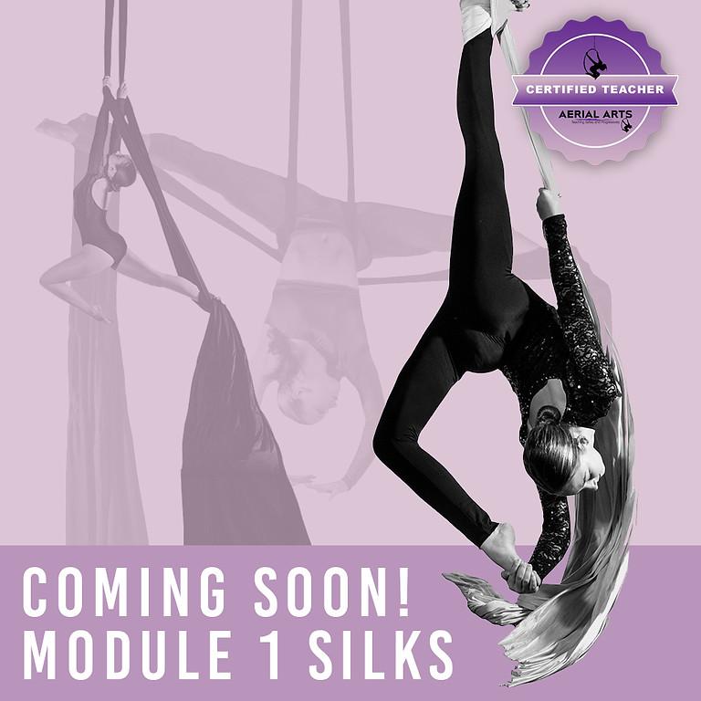Module 1 Silks - COMING SOON
