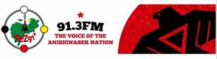 91.3FM.png