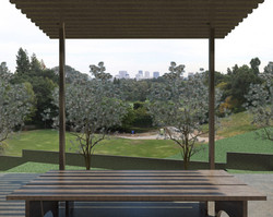 11-0610 Ext-Garden (View from Picnic Table).jpg
