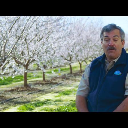 Almond Breeze Grower Series