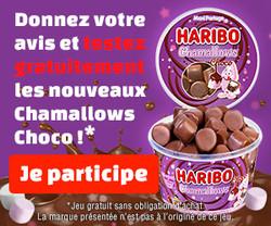 Conso-Enquête Chamallows Choco