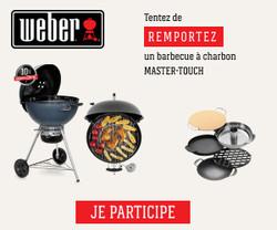 Barbecue à charbon Master-Touch de Weber