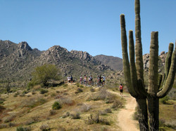 McDowell Mountain Trails