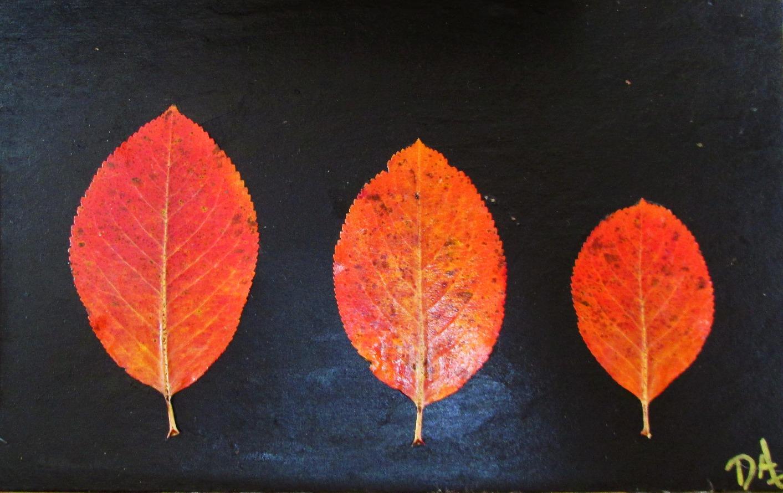 Nature's Vibrant Trio