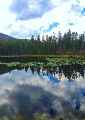 Basin Creeks Lake Trail.png