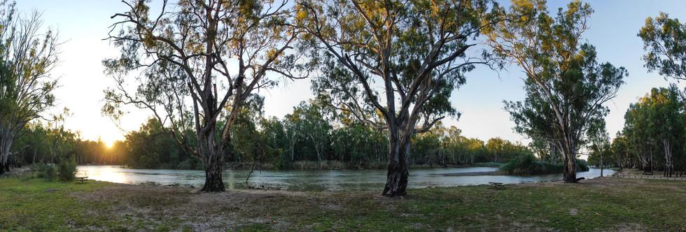 Murray River 3