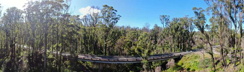 East Victoria bushfire recovery 1