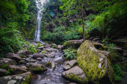 Erskine Falls 4