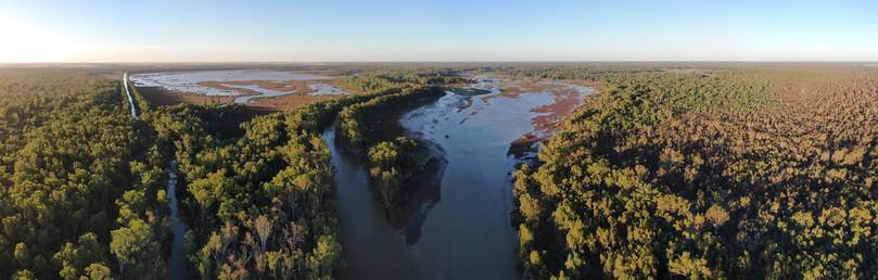Murray River 1 - Barmah National Park