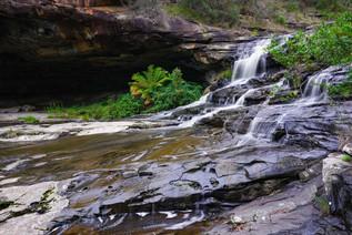 Sheoak Cascades 10