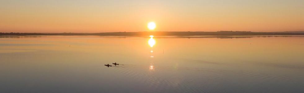 Swan Bay Kayakers