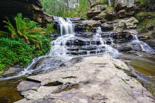 Sheoak Cascades 5