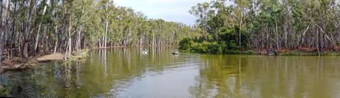 Murray River 1
