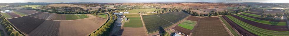 Baccus Marsh Vegetable Farms