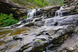 Sheoak Cascades 9