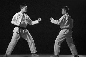 Ju Jitsu duo system