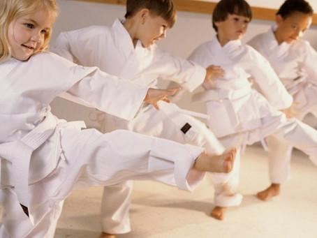 Baby Ju Jitsu Lessons