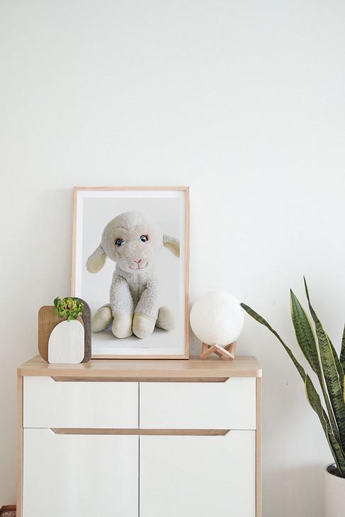 sentimental-stuffed-animal.jpg