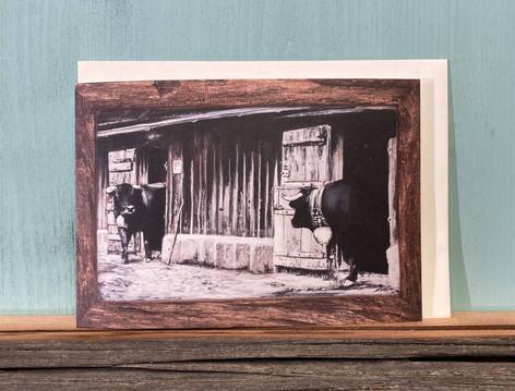 Kartennr. 059 Eringer Kühe