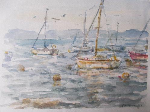 Evening Boats at Brixham Estuary