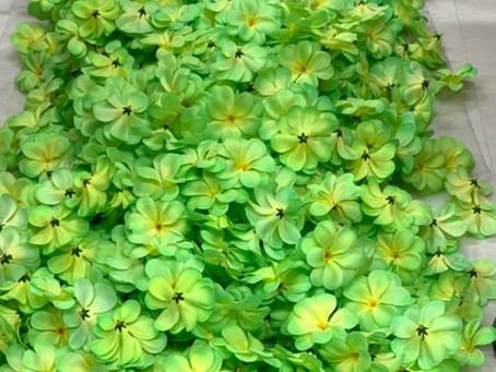ベルマーレの花がどーんと届きました!