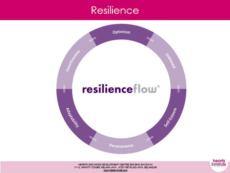 resilienceflow.png