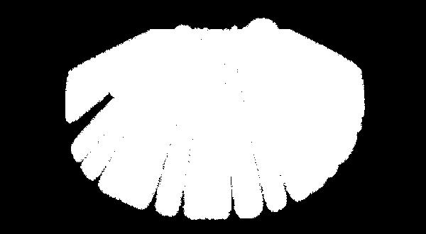 ลำแสงขาวด้านบนx.png