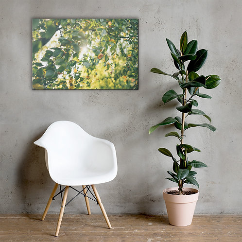 Nature Energy 10 - Canvas