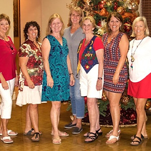 2017 Ladies Christmas Party