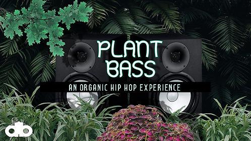 plant bass.jpg