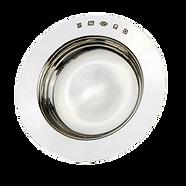 silver-armada-dish-min.png