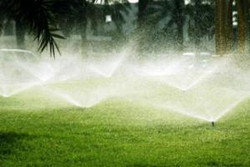Repaired Irrigation System