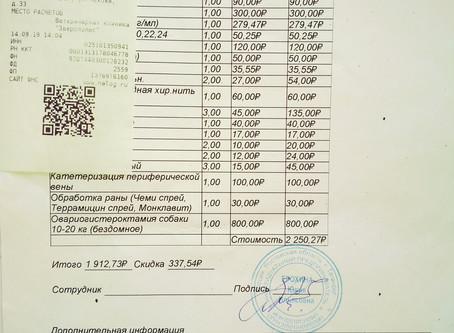 Отчет №46 Стерилизация собаки № 19-55 ЖУЖА