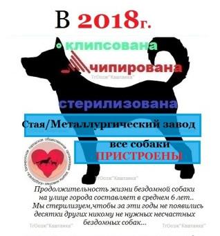 Новости  декабря 2018г.