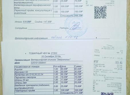 Отчет №55 Лечение собаки №19-56 Михалыч