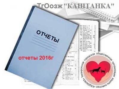 ГОДОВОЙ ОТЧЕТ за 2016г.